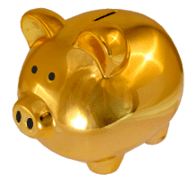 Great Functionality Piggy Bank